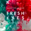 Fresh Eyes (Grey Remix) - Single, Andy Grammer