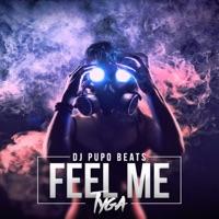 Feel Me (Instrumental) [feat. Tyga] - Single Mp3 Download