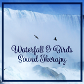 Waterfall & Birds Sound Therapy: Relaxing Nature Music for Meditation & Yoga & Massage & Deep Sleep