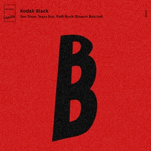 Too Many Years (feat. PnB Rock) [Baauer Rewind] - Single Mp3 Download