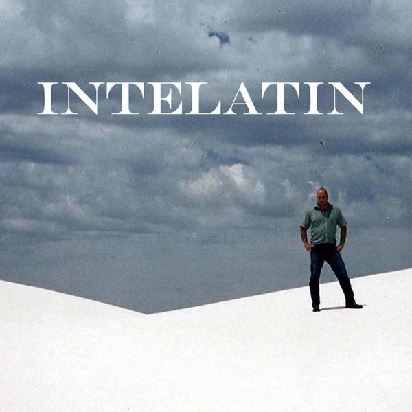 Intelatin, an Independent Public Library