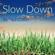 Slow Down - Paul Collier