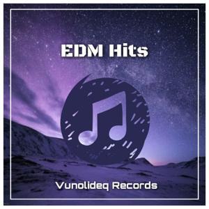 群星 - Edm Hits - EP