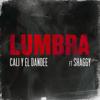 Cali y El Dandee - Lumbra (feat. Shaggy) ilustración