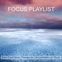 Focus Playlist – Brain Food Music Therapy for Concentration on Study