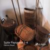 Suite Paysanne 1 - 4 (Themen und Variationen) - Hannes Meyer