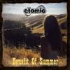 Benefit of Summer - Single ジャケット写真