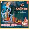 Om Namah Shivay Shiv Dhun