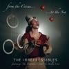 In This Shirt by The Irrepressibles iTunes Track 5