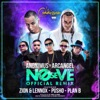 No Se Ve (Remix) [feat. Arcángel, Plan B, Pusho & Zion & Lennox] - Single, Anonimus