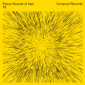 Future Sounds of Jazz, Vol. 13