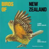 Land Bird Calls / Sea Bird Calls
