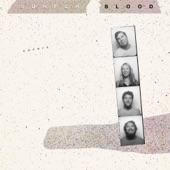 Surfer Blood - I Melt With You (Modern English)