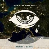 Kelissa;Sa-Roc - How Many More (Remix)