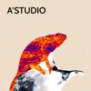 А'Студио - Хамелеоны обложка