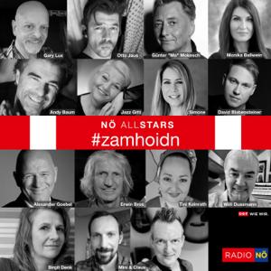 NÖ Allstars - Zamhoidn