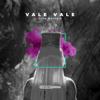 Alok & Zafrir - Vale Vale artwork