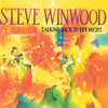 Steve Winwood - Talking Back To The Night artwork