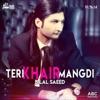 Teri Khair Mangdi feat Dr Zeus Young Fateh Single