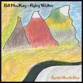 Bill MacKay and Ryley Walker - Pretty Weeds Revisited
