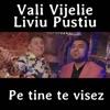 Pe Tine Te Visez - Single, Vali Vijelie & Liviu Pustiu