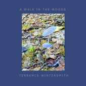Terrence Wintersmith - A Walk in the Woods