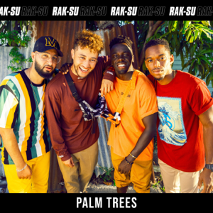 Rak-Su - Palm Trees