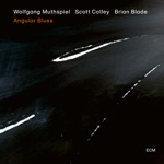 Wolfgang Muthspiel, Scott Colley & Brian Blade - Solo Kanon in 5/4