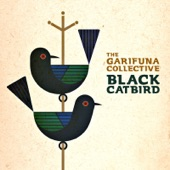 The Garifuna Collective - Black Catbird