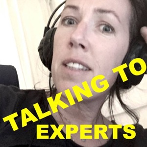 Talking to Experts