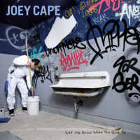 Joey Cape - Let Me Know When You Give Up artwork