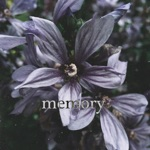 Dripgirl - Memory