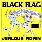 Black Flag - Revenge