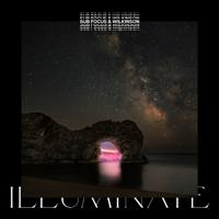 Illuminate-Sub Focus & Wilkinson
