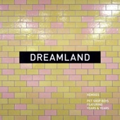 Pet Shop Boys;Years & Years - Dreamland (TWD vocal remix)