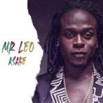 Mr Leo - Asabe