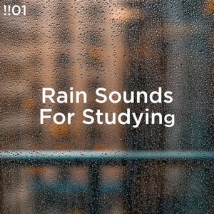 Rain Sounds & Rain for Deep Sleep - !!#01 Rain Sounds for Studying