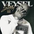 Germany Top 10 Hip-Hop/Rap Songs - Sorry - Veysel