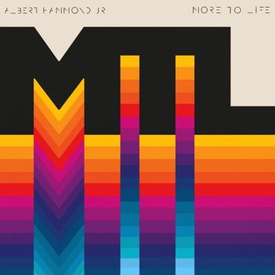 More to Life - Single - Albert Hammond Jr.