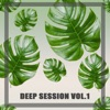 Deep Session, Vol. 1