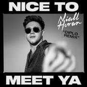 Nice to Meet Ya (Diplo Remix) - Niall Horan & Diplo - Niall Horan & Diplo