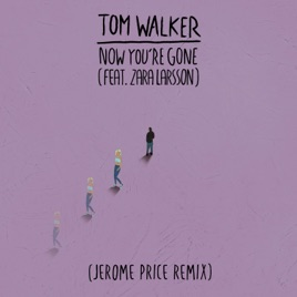 Tom Walker – Now You're Gone (feat. Zara Larsson) [Jerome Price Remix] – Single [iTunes Plus AAC M4A]