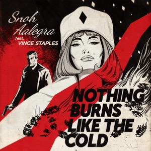 Nothing Burns Like the Cold (feat. Vince Staples) - Single