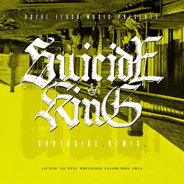 Southside (Remix) [feat. Lil Flip, Lil Wyte, Whitegold, Pastor Troy & Foxx] - Single