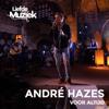 André Hazes Jr. - Voor Altijd (Live Uit Liefde Voor Muziek) artwork
