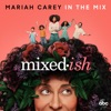 In the Mix - Single