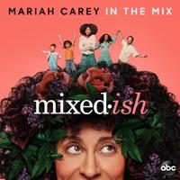 Mariah Carey - In the Mix