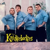 The Knickerbockers - I Can Do It Better