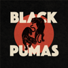 Black Pumas - Colors  arte