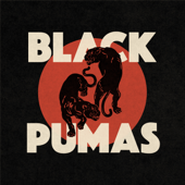 Colors - Black Pumas
